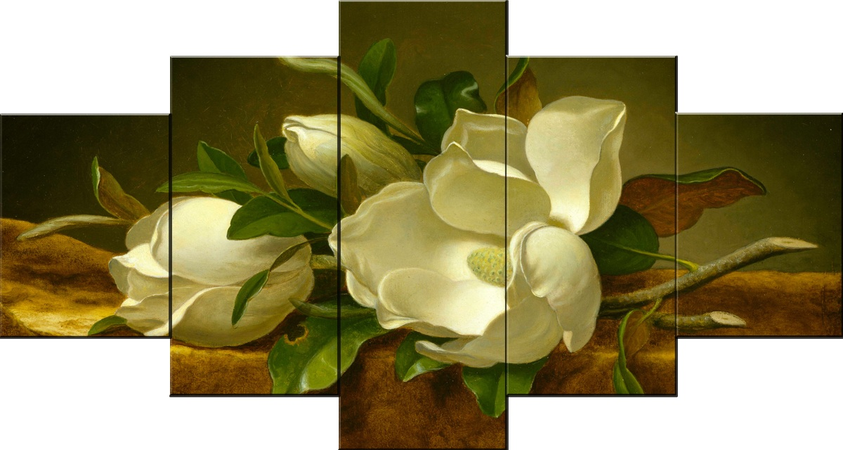 5 Piece Classical White Flowers Canvas Wall Art Decor Stretched Framed Ready to Hang