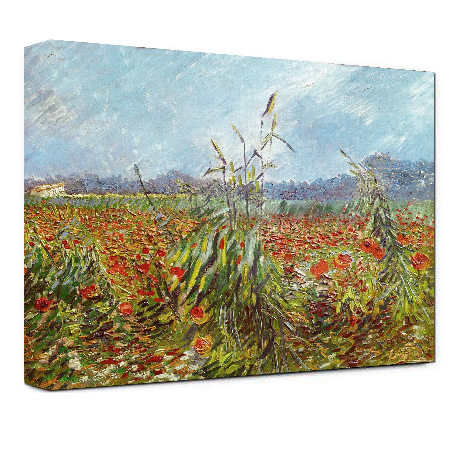 Hand Painted Green Ears of Wheat by Vincent Van Gogh oil painting-Landscape Canvas Wall Art